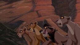Vitani, Zira, Nuka, nieznana lwica