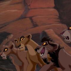 Vitani, Zira, Nuka i nieznana lwica