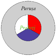 Purusa-Prakrti