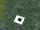 The Pits: Gazing Eye