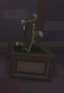 DivineGrapesThePlantRoom
