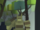Forest Guardian.png