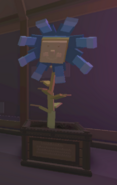 NobleBlueFlowerThePlantRoom