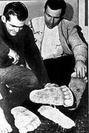 Паттерсон и Гимлин