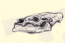 Bearded leviathan ref by cultistcarl d9y6i9k-