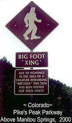 Осторожно! Бигфут