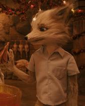 Kristofferson Silverfox - 'Fantastic Mr Fox'