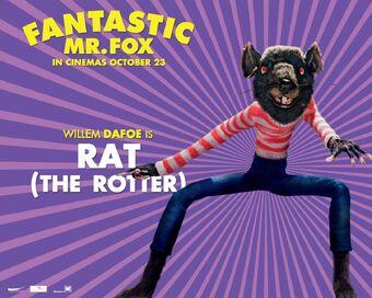 Rat Fantastic Mr Fox Wiki Fandom