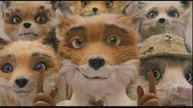 Fantastic-Mr-Fox-fantastic-mr-fox-14626816-853-480