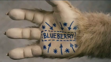 Blueberry paw