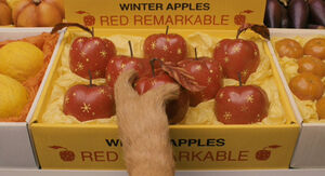Apples at the store