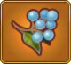 Wake-up Berries