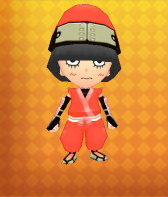 Ninja Outfit Example