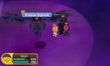 Shadow Bigbeak 1