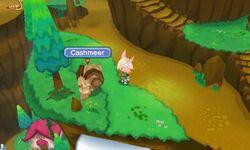 Fantasy-Life-Cashmeer