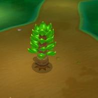 Great Desert Tree