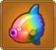Rainbow Sunfish