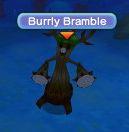 Burrlybramble-0