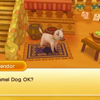 Caramel Dog