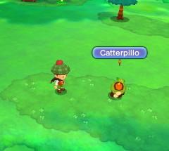 Catterpillo