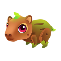 Sapybara Baby