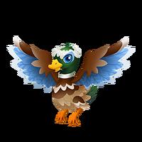 Friar Duck Juvenile