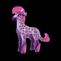 Pygmy Giraffe Adult