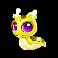 Banana Slug Juvenile
