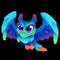 Ocean Owl Juvenile