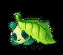 Lazy Leaf