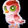 Cupid Sparrow Baby