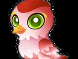 Cupid Sparrow