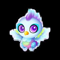 Parrotfish Baby