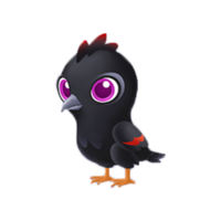 Lost Crow Baby