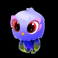 Owl Bear Baby