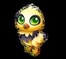 Beegull