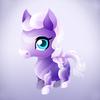 Draft Horse Baby