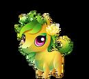 Peony Pony