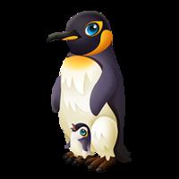 Papa Penguin Adult