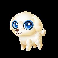 Present Puppy Baby