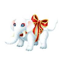 White Elephant Adult