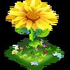 Sunflower Parasol