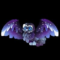 Nocturnowl Adult