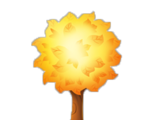 Dawn Tree