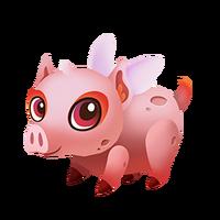 Pigmy Baby