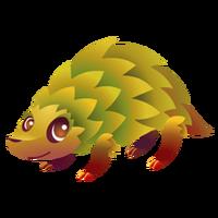 Harvest Hedgehog Juvenile