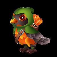 Hooded Robin Juvenile