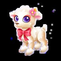 Little Lamb Juvenile