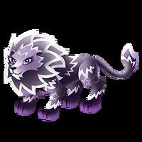 Leo Adult