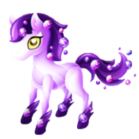 Amethyst Pony Juvenile
